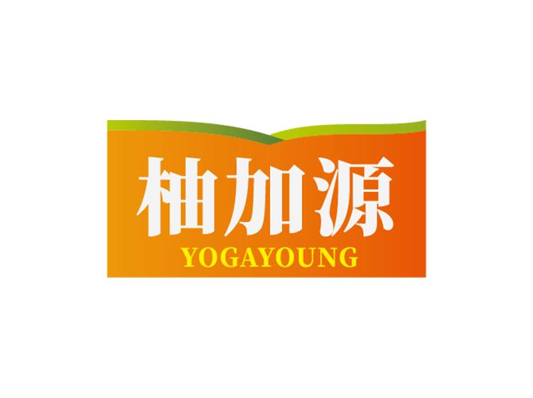 柚加源 YOGAYOUNG